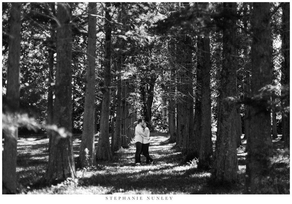forest-destination-engagement-session-020.jpg
