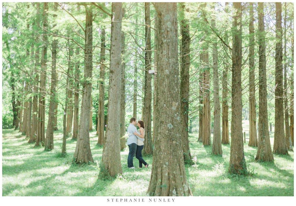 forest-destination-engagement-session-021.jpg
