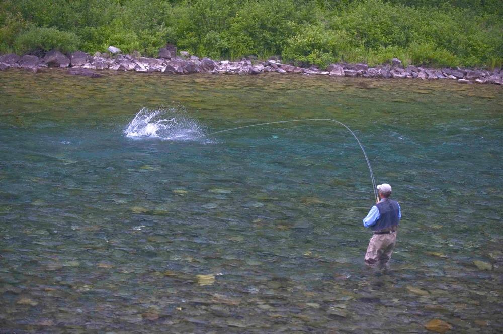 dryflyfishing3.jpg