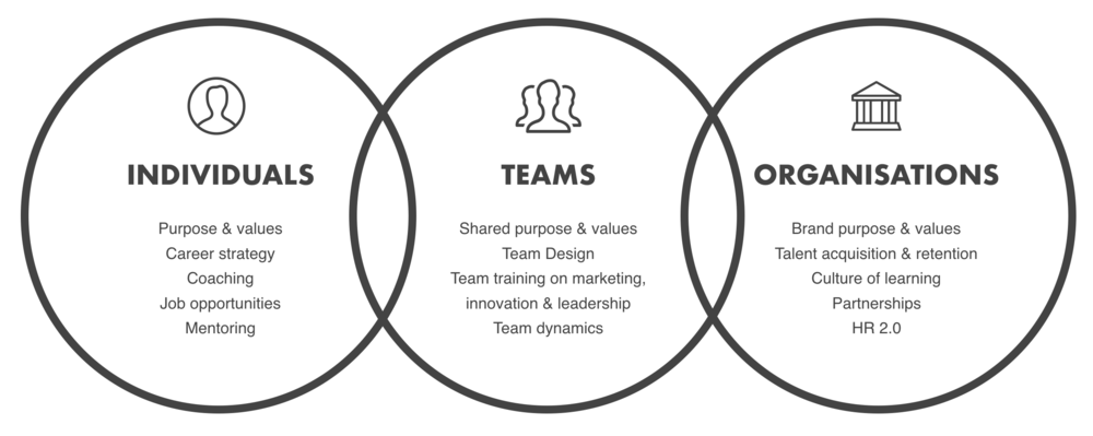 Individuals teams organisations