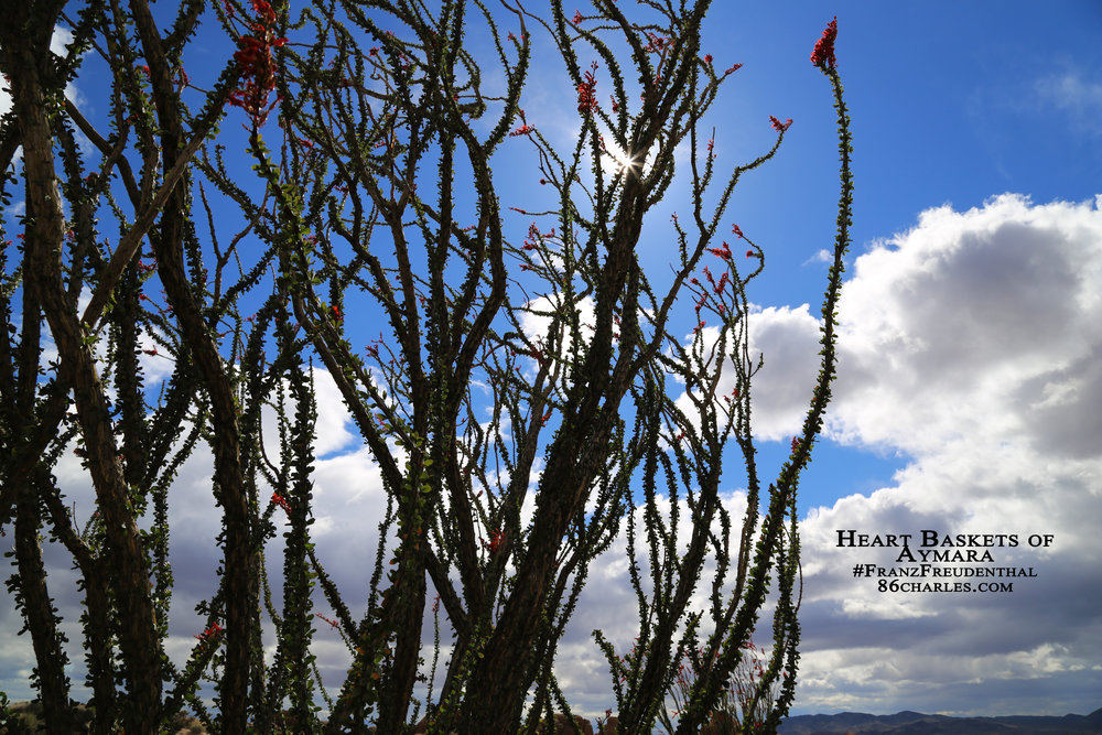 Heart Baskets of Aymara #FranzFreudenthal