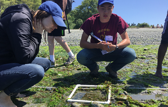 Helping Junior Leaders conduct intertidal zone surveys at Golden Gardens beach. Photo by Maile Sullivan, Washington Sea Grant.