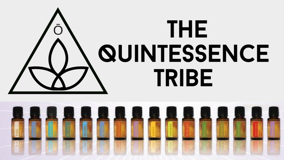quintessence tribe web banner.png