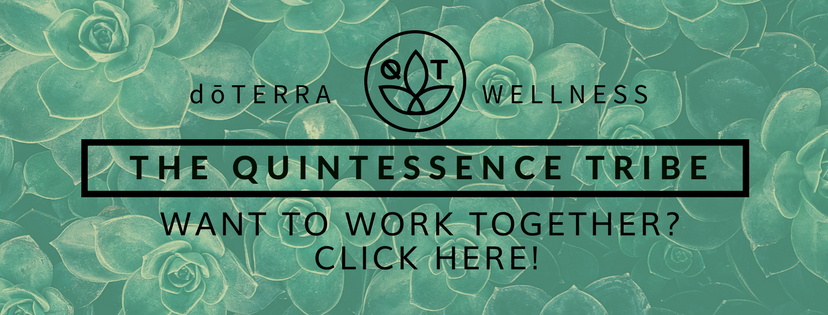 quintessence tribe want to work together banner.png