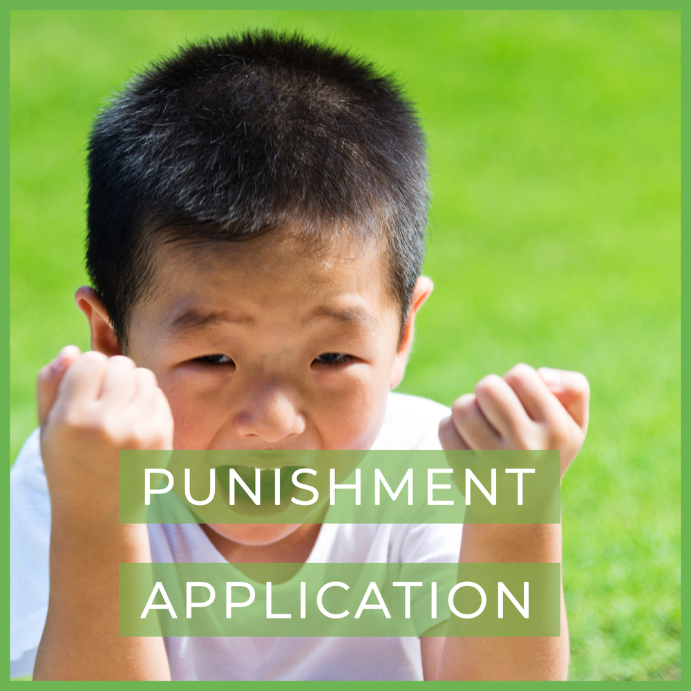 punishment application.png