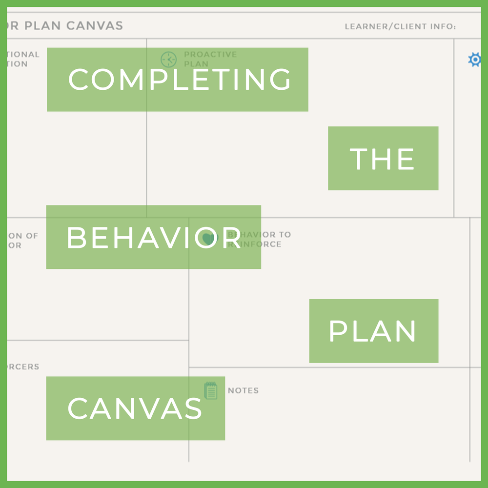 completing behavior plan canvas.png