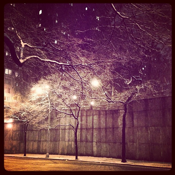 NYC First Snow