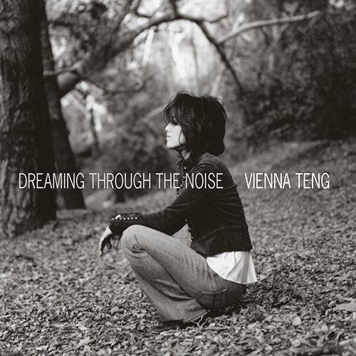 steven_jurgensmeyer_vienna_teng_dreaming_through_the_noise_500x500.jpg