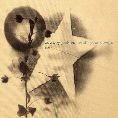 steven_jurgensmeyer_cowboy_junkies_neath_the_covers_500x500.jpg