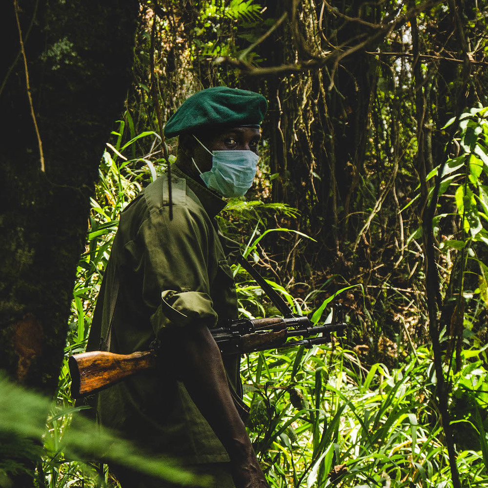 Guard in the Virunga Mountains in Eastern DRC.