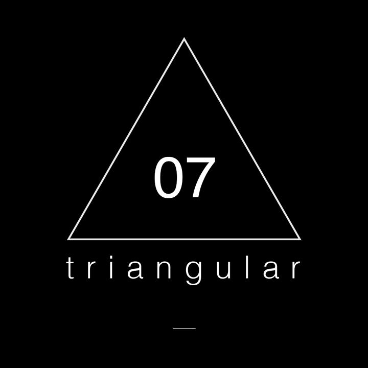 triangular 07 // del 05 al 24 de febrero de 2016.