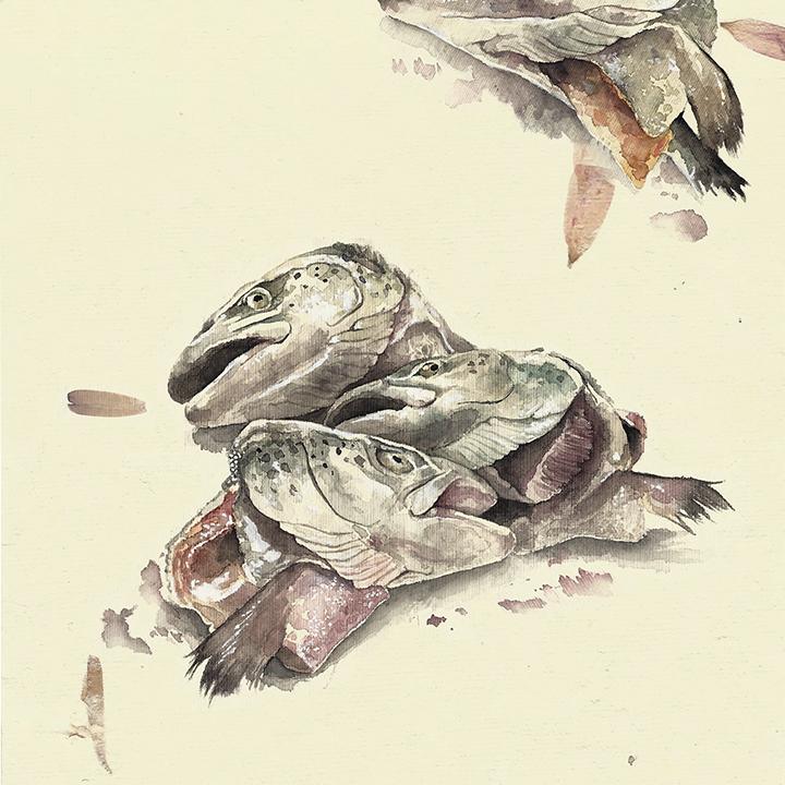 salmon dance // mandy anselmo // web - instagram
