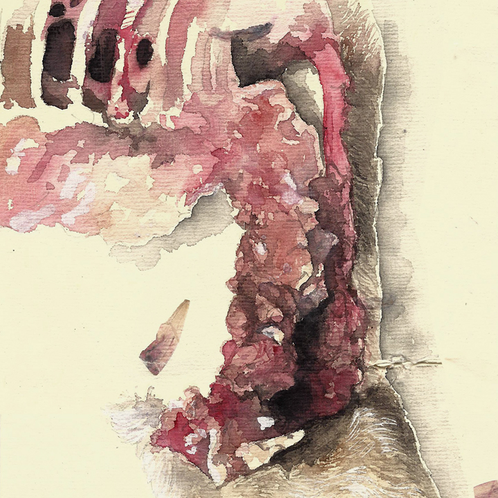 solo los huesos y la carnita // mandy anselmo // web - instagram