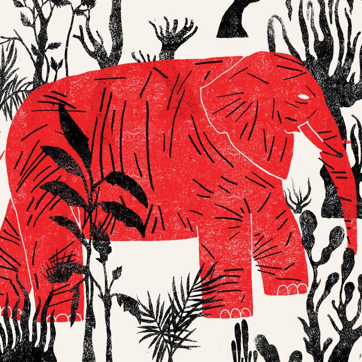 bestiario: el elefante // josé manuel vargas // instagram