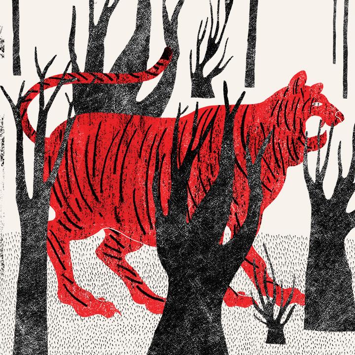 bestiario: el tigre  // josé manuel vargas // instagram