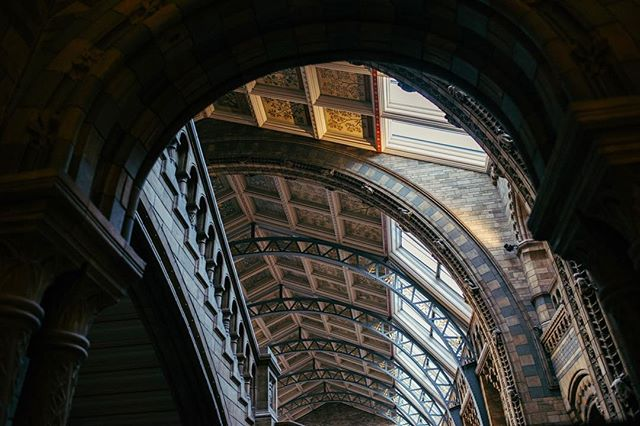 As well as being full of interesting exhibits, species and displays, The Natural History Museum has some pretty stunning architecture. . . . . . . #london #thisislondon #sunset #museum #goldenhour #architecture #shadows #vsco #vscocam #vscogood #vscotravel #adventure #travel #welivetoexplore #justgoshoot #lifeofadventure #exploremore #explore #nikon #d810 #nikonuk
