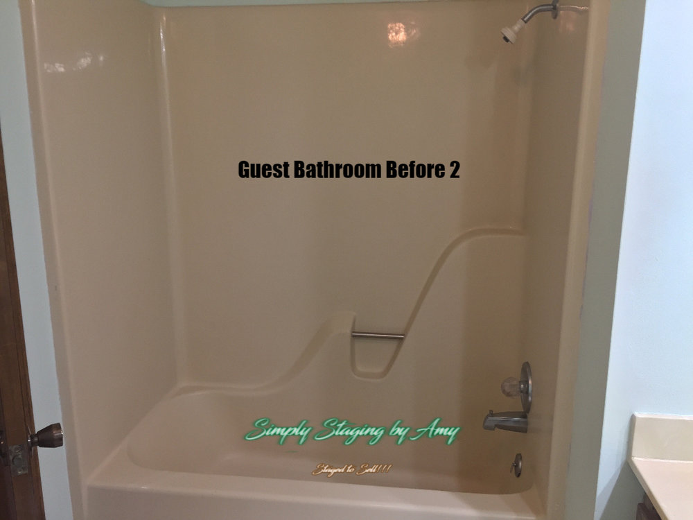 Palmer Guest Bathroom Before 2.jpg