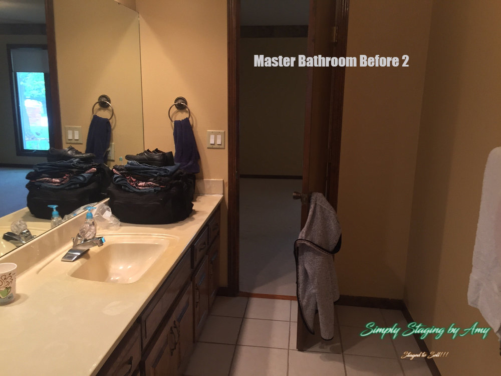 Palmer Master Bathroom Before 2.jpg