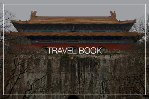 Travel Thumbnail.png