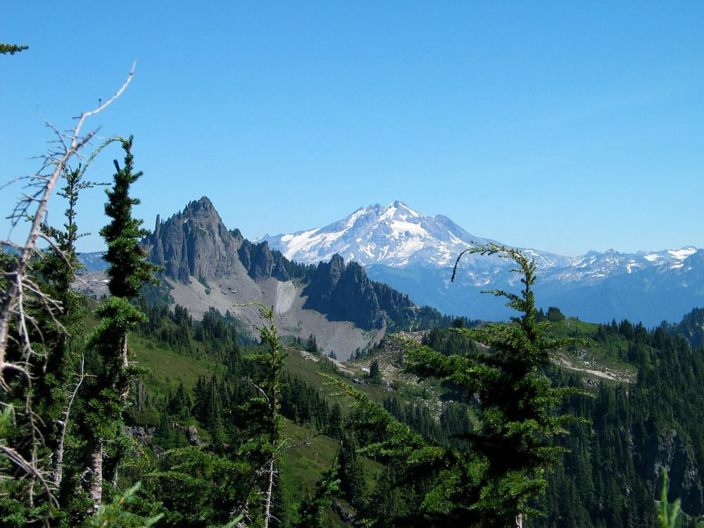 Mount Forgotten:stilly meadows_o.jpg