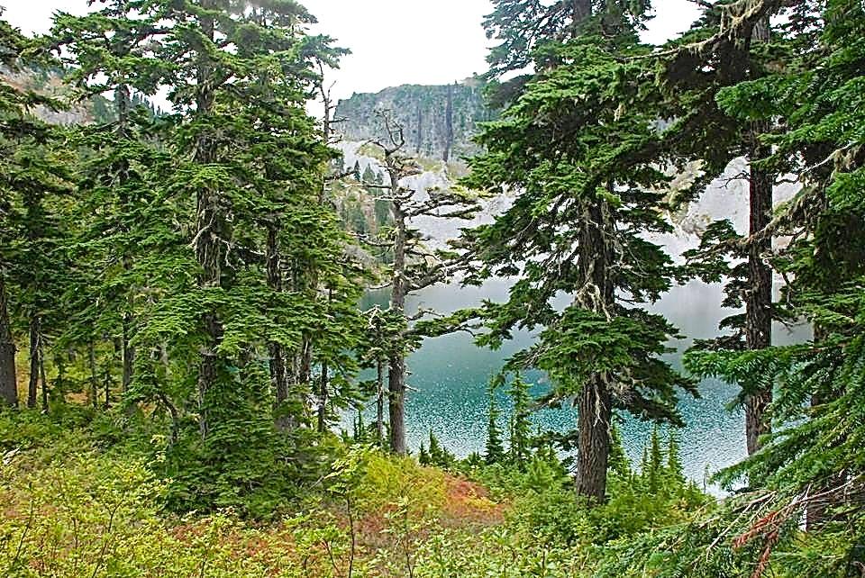 Chain Lakes4_n.jpg