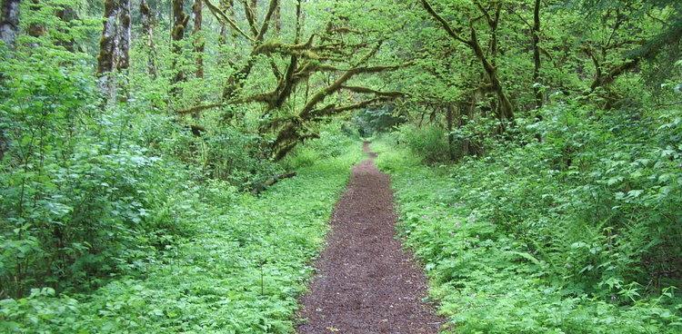 why hike.jpg