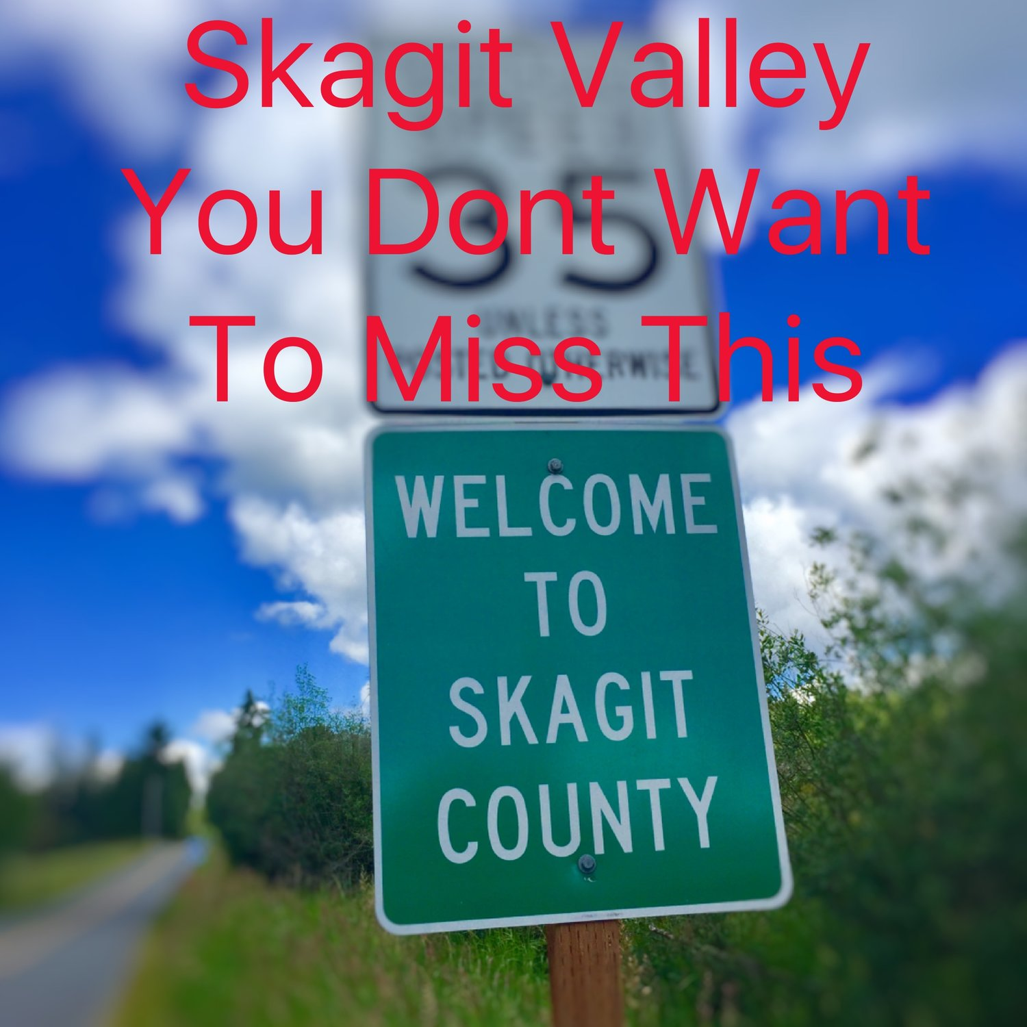 Skagit Valley You Don't Want to Miss This
