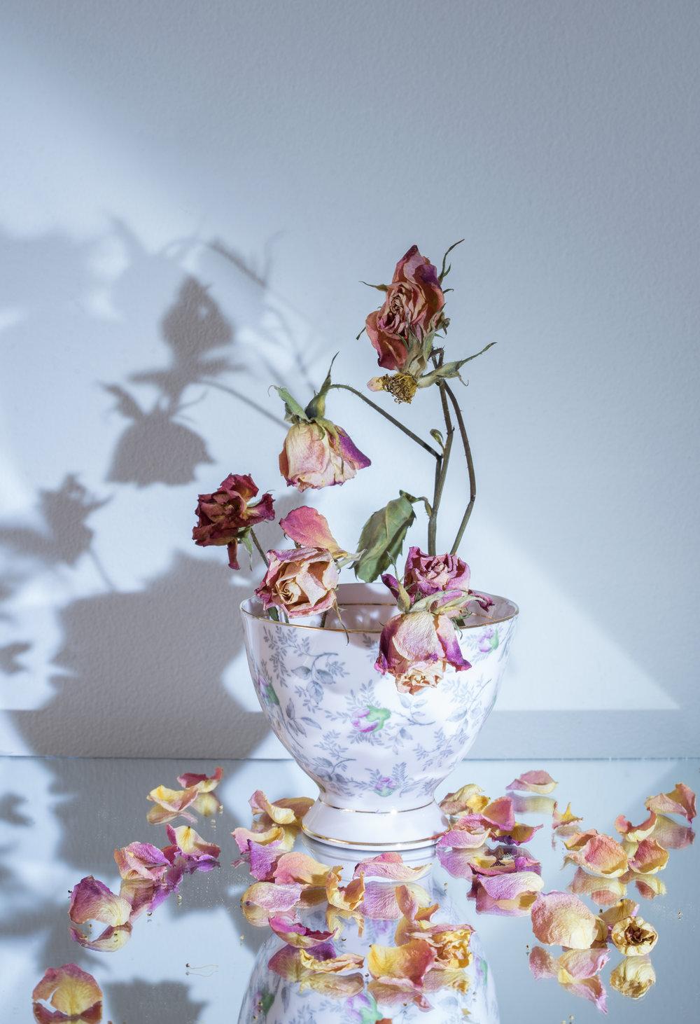 dead-rose-vase-3.jpg