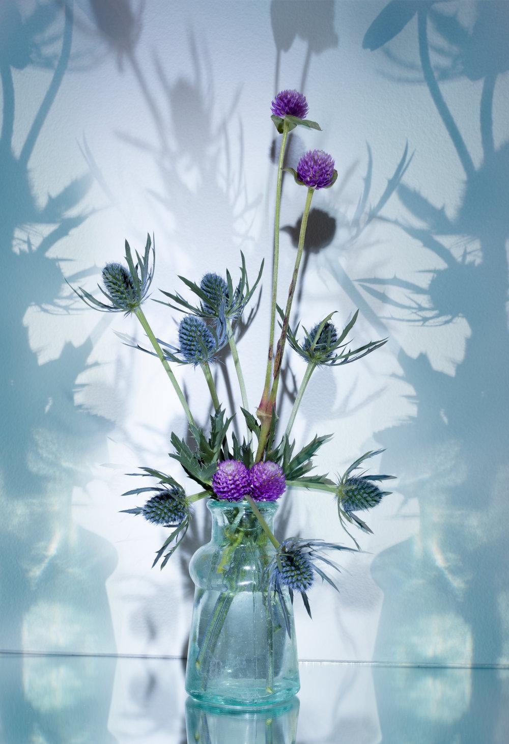 thistle-vase-2.jpg