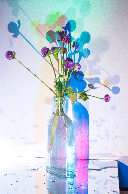 weed-vase-1.jpg