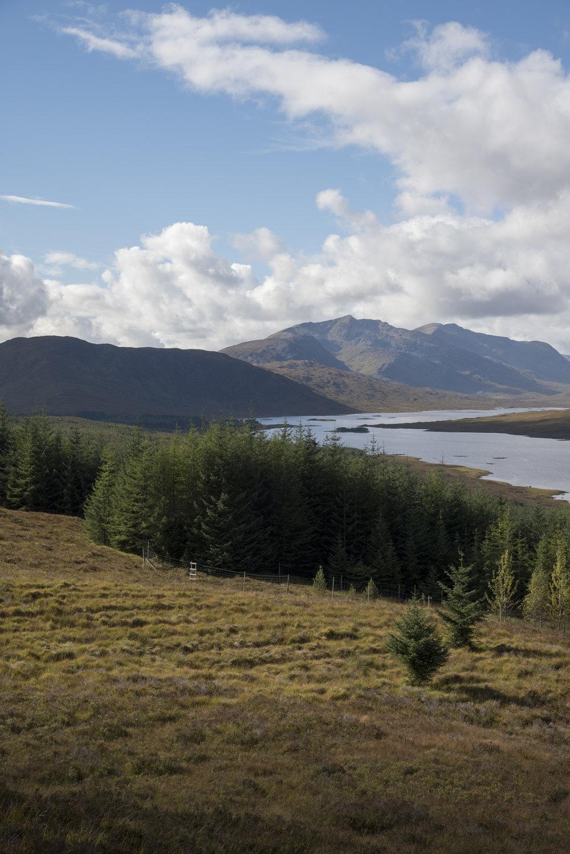 scotland plus_37.jpg