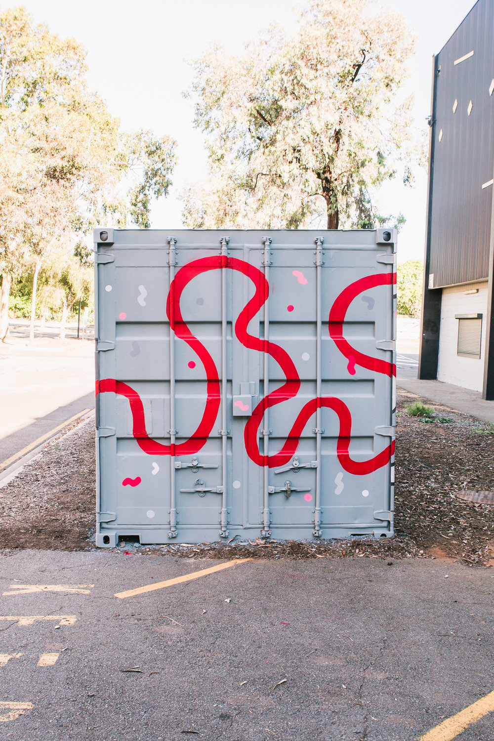 NSS Container  (3 of 11).jpg