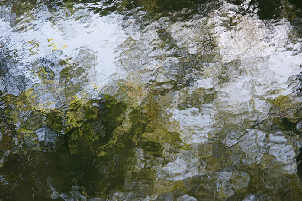 Impromptu Green and White,  2013 Archival Pigment Print 30 x 40 inches