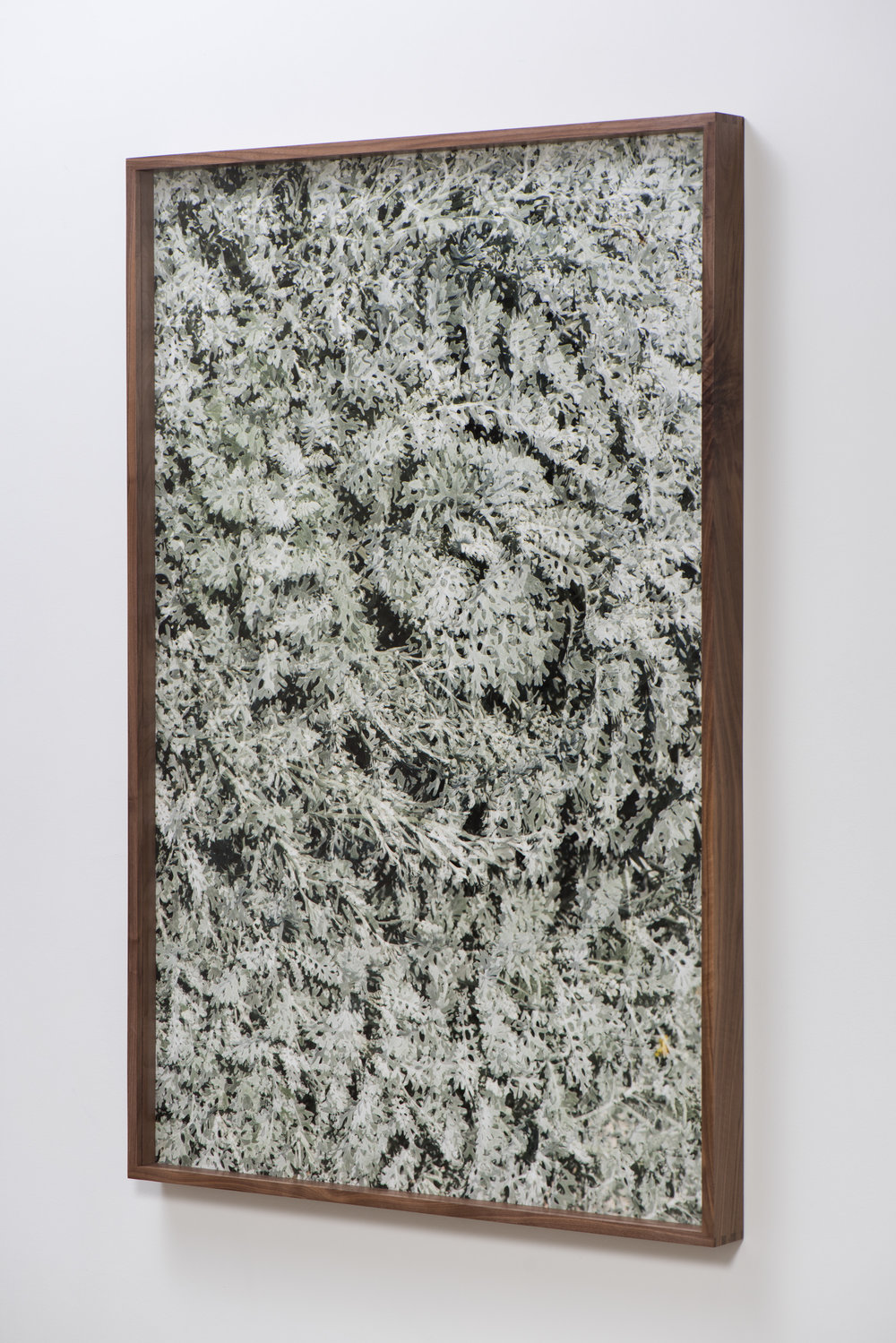 Spiral II,  2017 (oblique) Archival pigment print 60x40 Inches