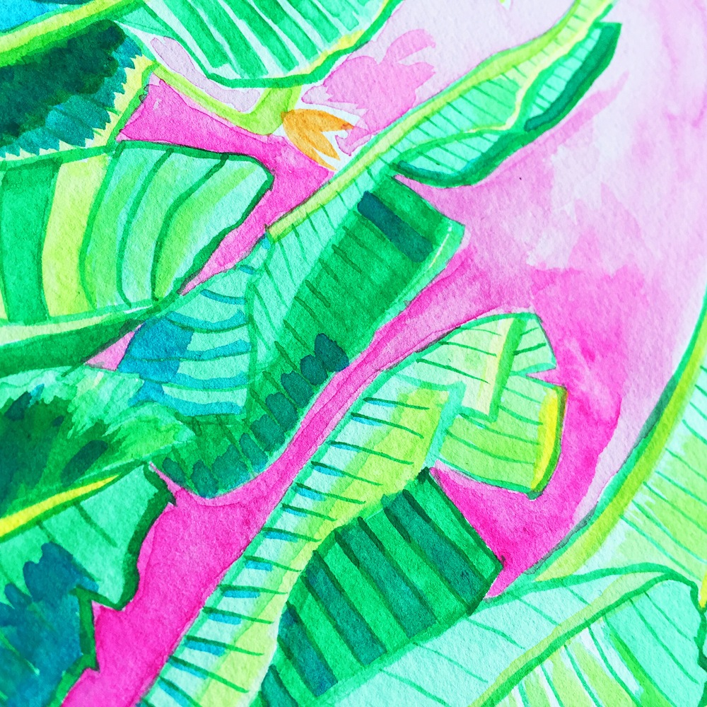 Day 21/100 Close up of banana leaves and birds of paradise from a photo I took.