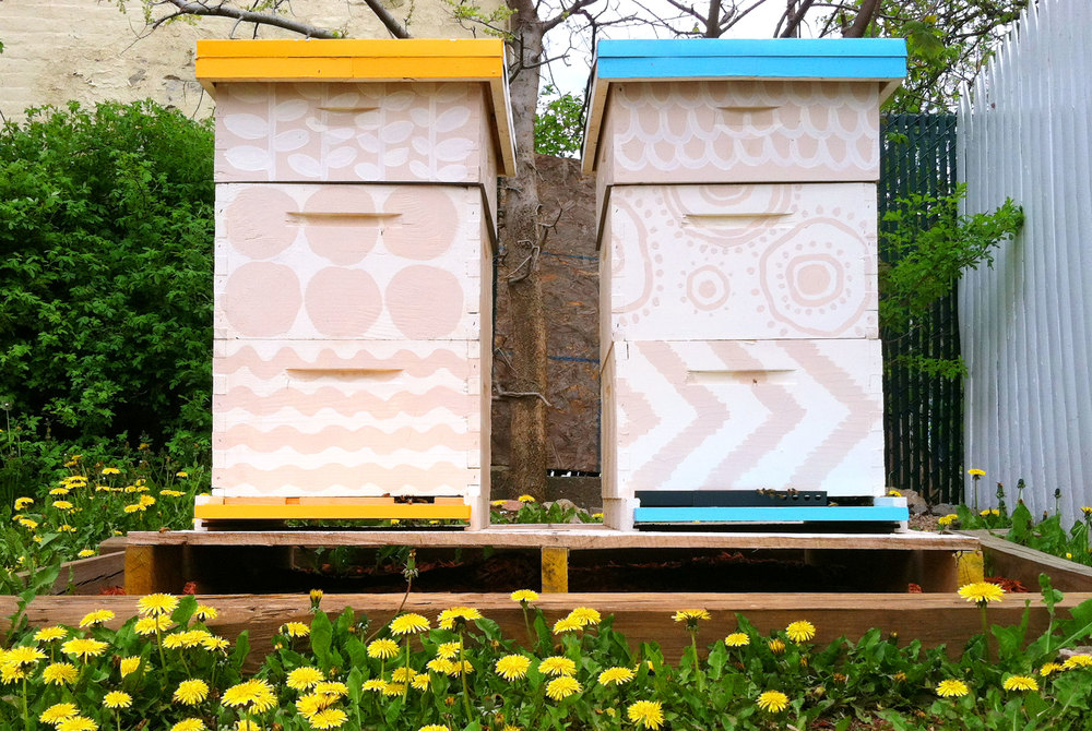 Miss-Molly's-2hives.jpg
