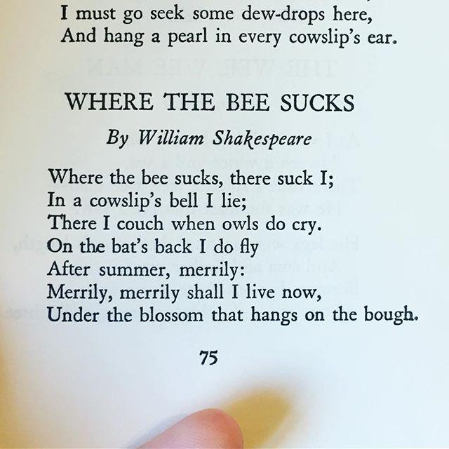 #beepoetry #shakespeare #poem #poetry #bees #nectar #vintagebooks