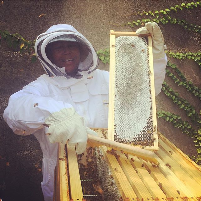 Congrats to Maria on her first honey harvest! Beautiful work, ladies! ✨