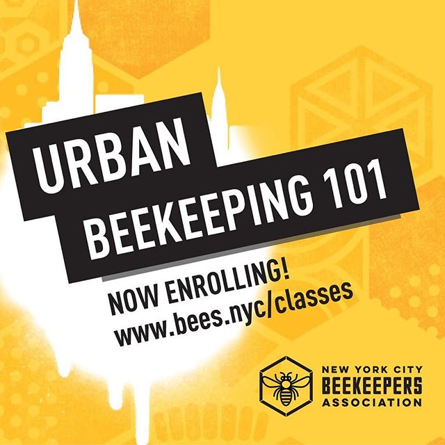 Tomorrow! @bees.nyc begins its annual #beekeeping for beginners course. It's not too late to sign up for this fun and educational four-session course. www.bees.nyc