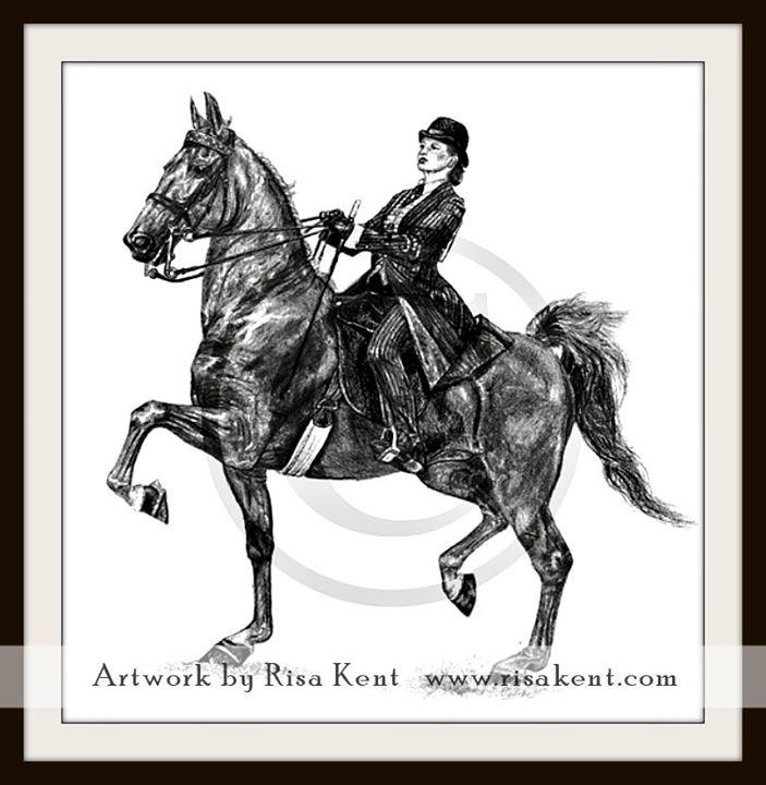 Risa-Kent-portrait-horse-Saddlebred