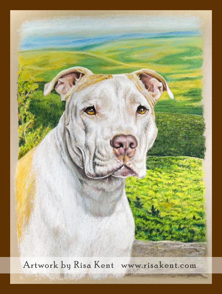 Risa-Kent-pet-portrait-pastel