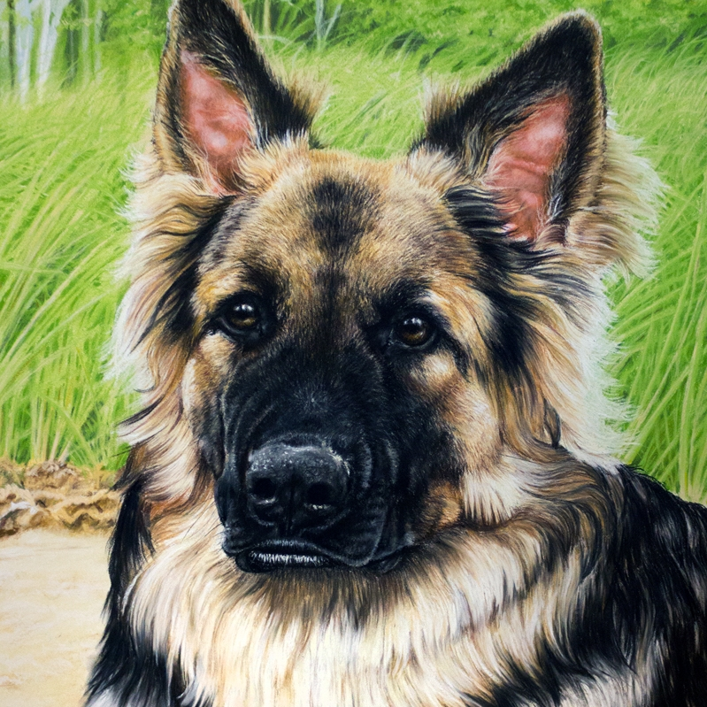 Risa_Kent-Dog_Portrait_Gallery