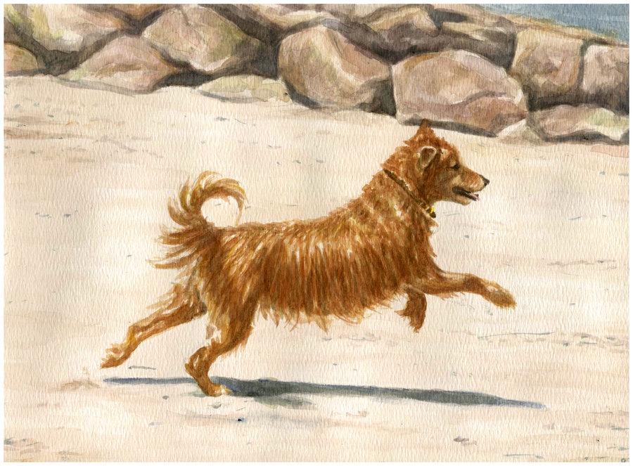 Risa-Kent_Dog-Watercolor-Portrait.jpg