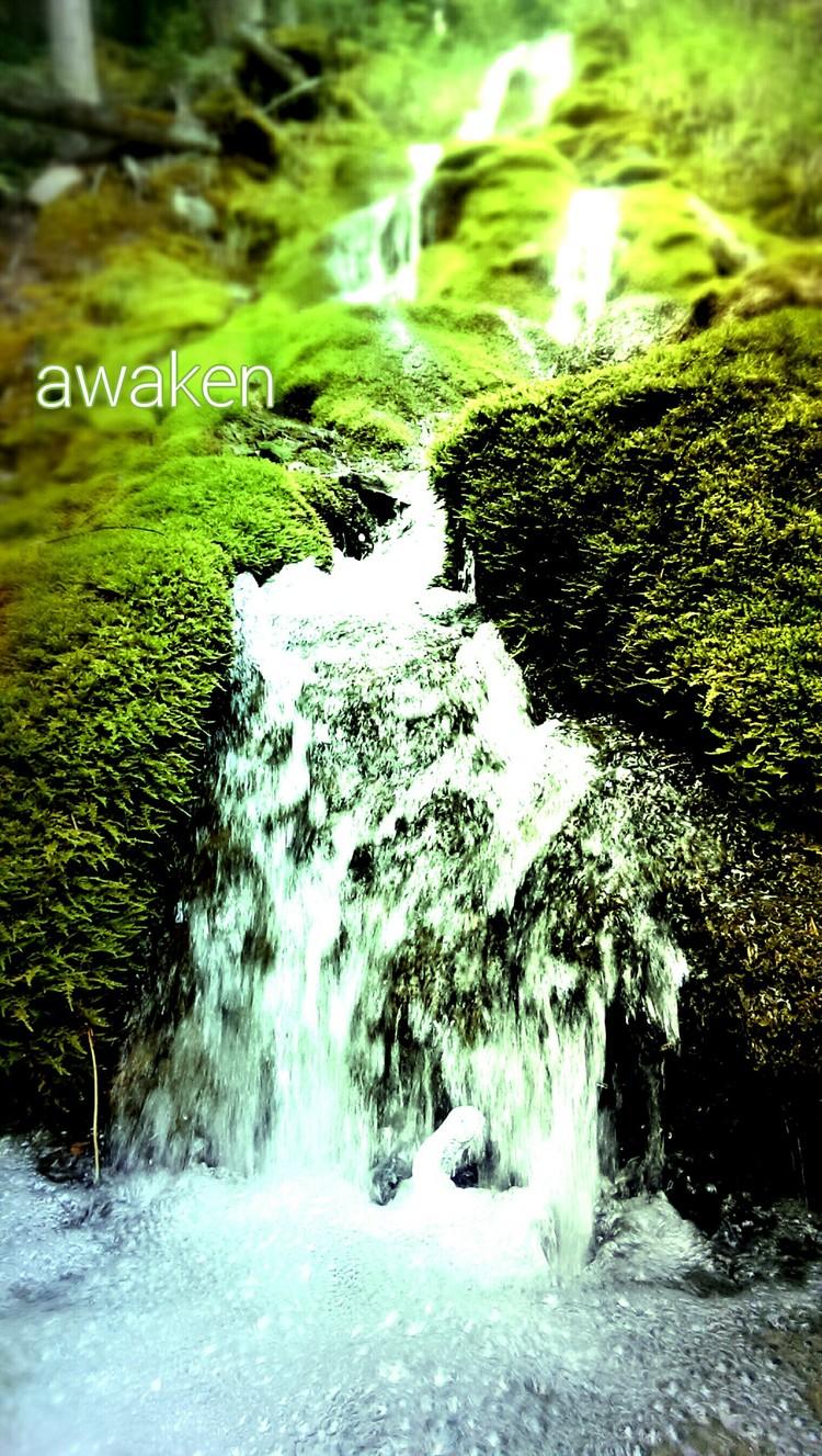 Awaken - the pretenders.jpg