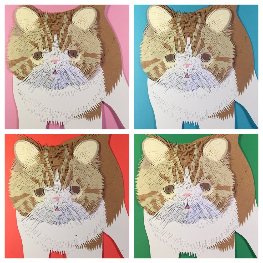 Instagram Cat (Kernard)