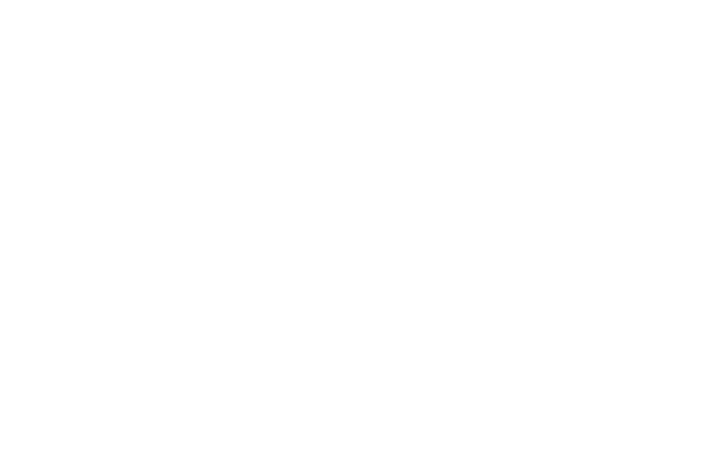 BEST DIRECTOR  - Yh Mourhia Wright  - NEWARK INTERNATIONAL FILM FESTIVAL.png