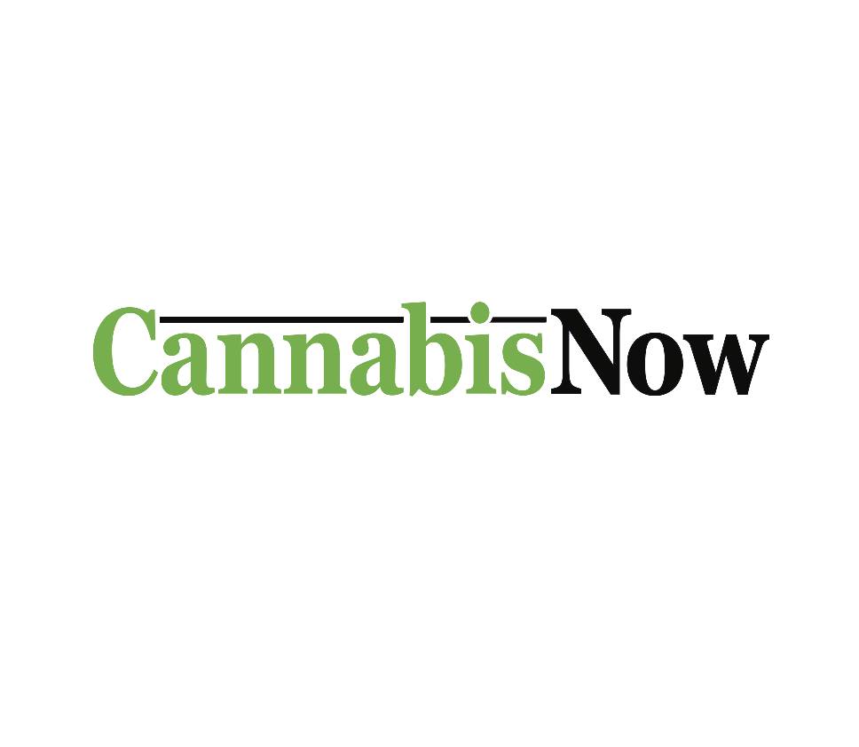 cannabis now logo.png
