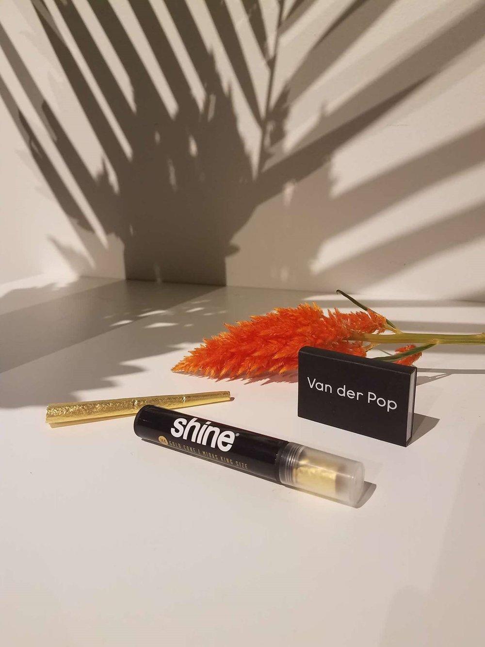 shine cones.jpg
