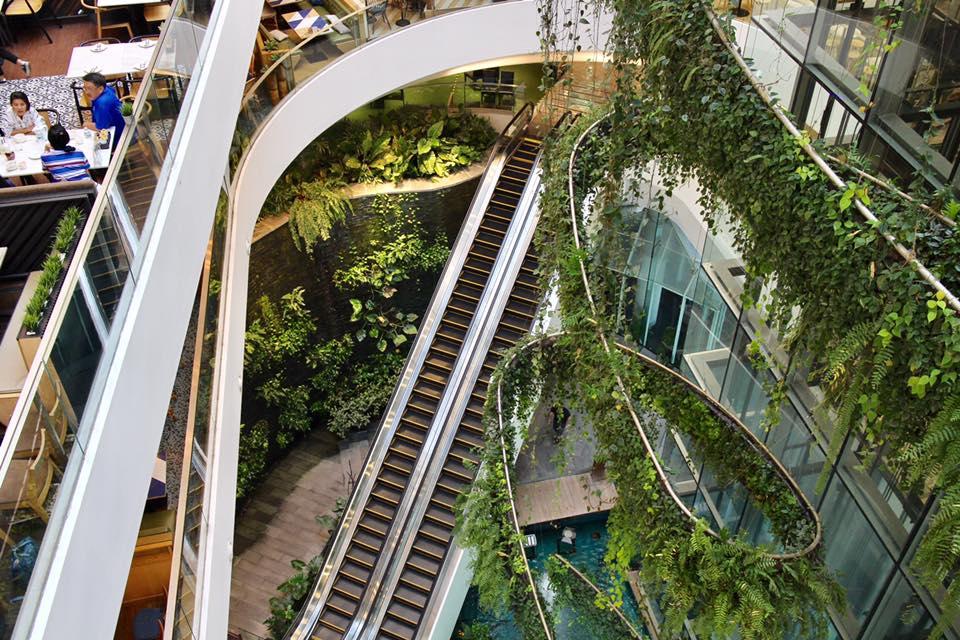 寬敞的中庭天井,綠意像瀑布從上傾瀉盤旋穿越每一個樓層