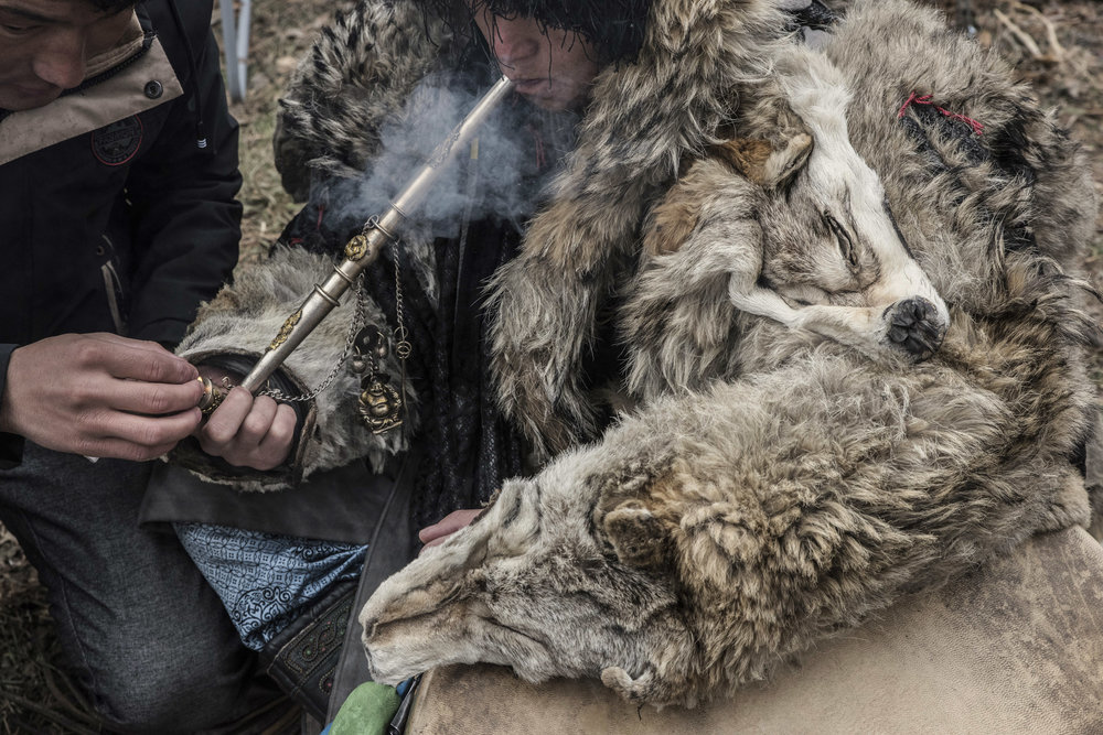 An assistant is lighting a pipe filled with tobacco for a shaman wearing a coat made of wolf skin. Before and during the trance shamans smoke tobacco and drink vodka.  The adoration of flora and fauna is essential to shamanism and certain animals are considered to be totems or symbolic ancestors for tribes or clans. The wolf is a mythical ancestors of the Mongols.